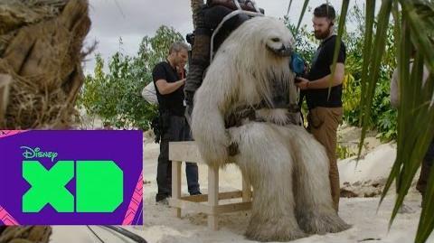Las criaturas de Rogue One una historia de Star Wars - DXD XTRA