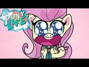 My Little Pony en español NUEVA SERIE- PONY LIFE 🦄 La vía menos trotada - Episodio Completo