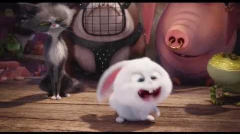 La Vida Secreta de tus Mascota - Clip Snowball tiene un accidente