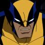 EMH-Wolverine
