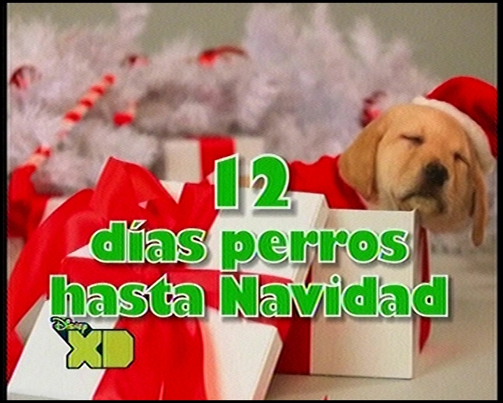 12 días perros hasta Navidad