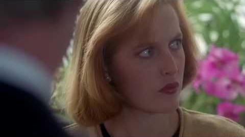 The X Files Temporada 3, Capitulo 2(informante)