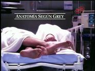 Anatomía según Grey logo intro