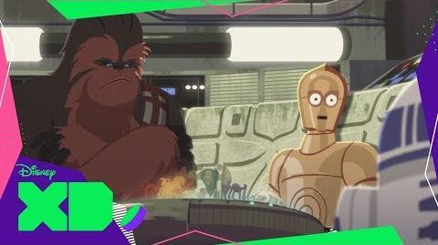 Chewie vs