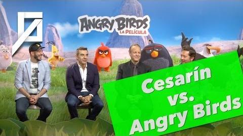 Estos dudes grabaron las voces de Angry Birds y casi ni jugaban 😁🤘🏻