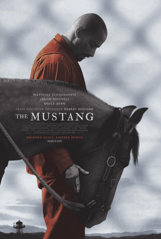 Mustang: La rehabilitación