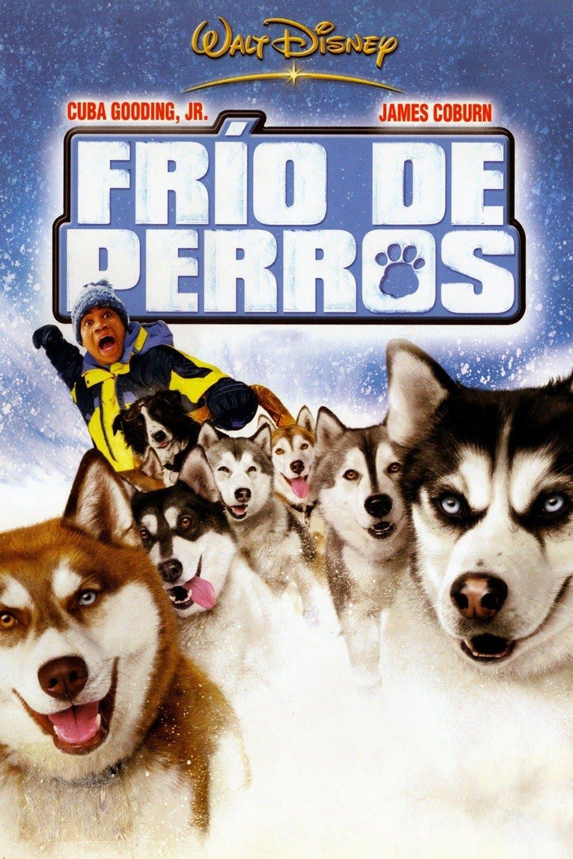 Frío de perros