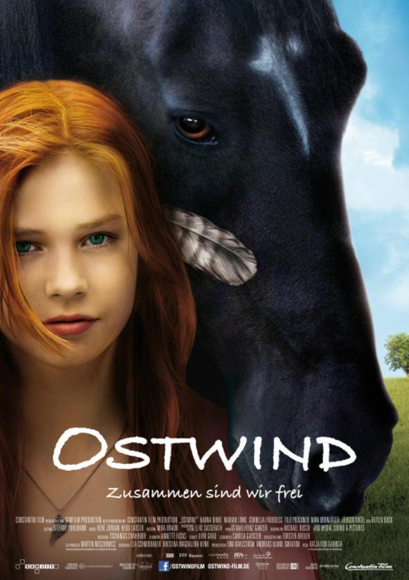 Windstorm, el caballo indomable