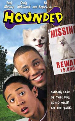 Perseguido (2001)