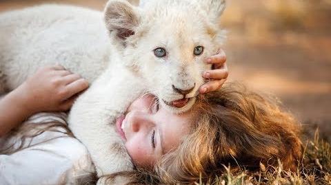 Mi Mascota es un León - Trailer Oficial Doblado al Español