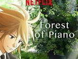 El bosque del piano