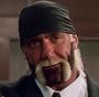 Hulk Hogan MFS