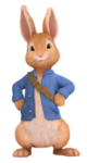 Peter-Rabbit2.png