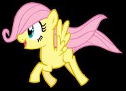 MLP-FluttershyY