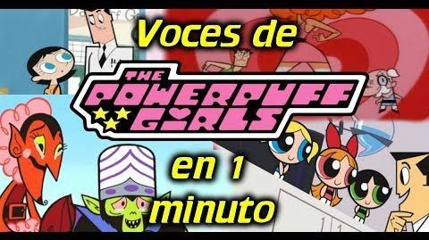Voces de LAS CHICAS SUPERPODEROSAS en 1 minuto