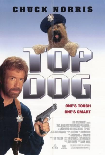 Mi perro detective