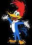 Woodywoodpecker201802