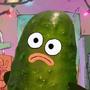 PYM-Pickle