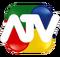 ATV-logo-1a1.png