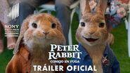 Peter Rabbit Conejo en Fuga - Tráiler Global