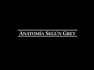 Anatomia segun Grey logo intro negro
