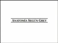 Anatomia segun Grey logo intro blanco