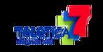 Teletica-1.png