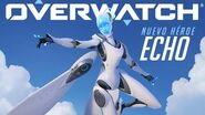 Presentando a Echo Overwatch