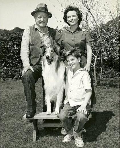 Lassie (1954)