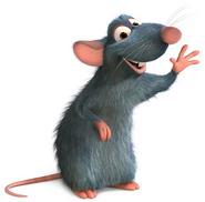 Rata Remy