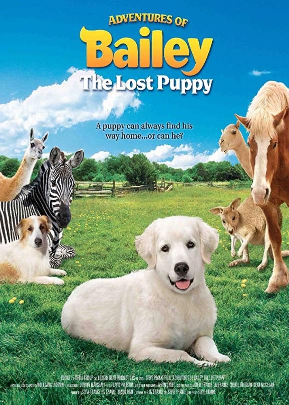 El cachorro perdido