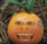 TheStarvingGamesOrange
