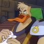Mighty Ducks Canard