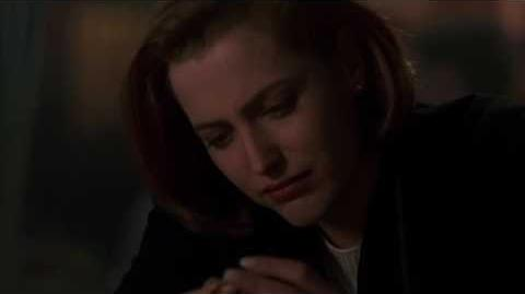 Cumpleaños de scully X Files 4-17