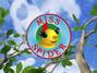 Las aventuras de Miss Spider logo