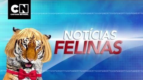 ¡Otra semana en Cartoon! México Episodio 10