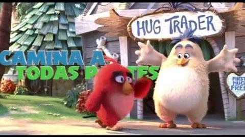 """Angry Birds La Película """"Día Internacional de La Felicidad"""""""