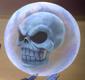 Skull SA