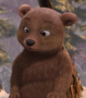 BearCub AAO