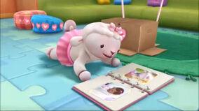 Lambie looking at a photo album.jpg
