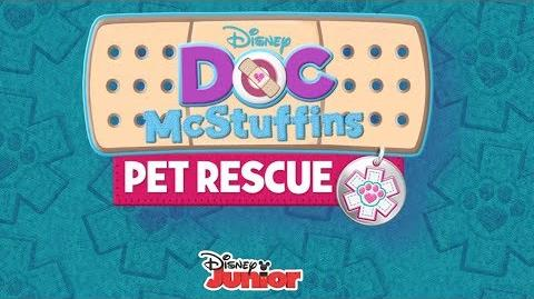 Pet Rescue Team
