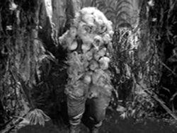 Varga-plant-man.jpg