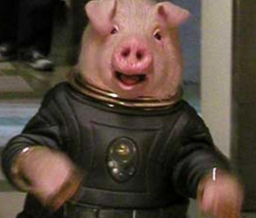 Космическая свинья