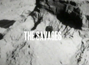 026 - The Savages