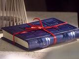 River Songs Tagebuch