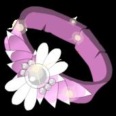 Celerity Belt
