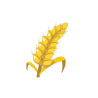 Contaminated Grain Sample