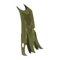Ouassingual Cape