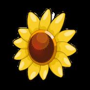Wild Sunflower Shield