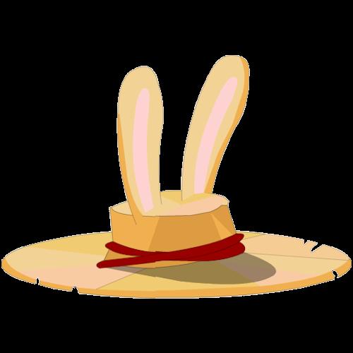 Coney Hat